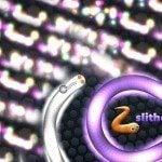 Slither.io High Score