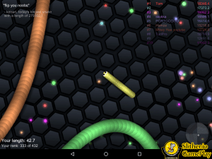 slither..io lag problem fixed