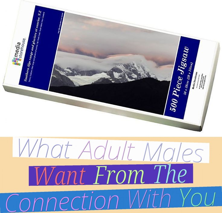 What Adult Males Want From The Connection With You
