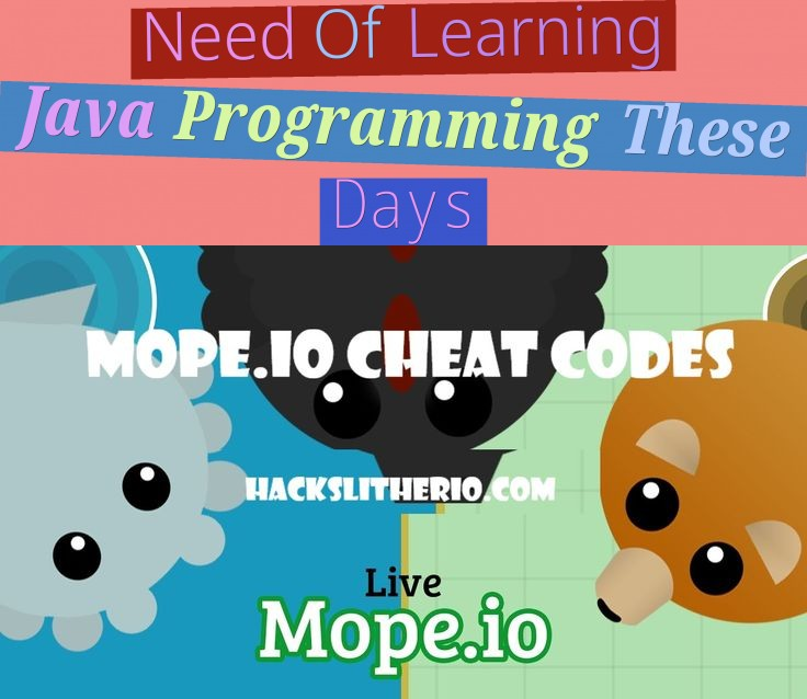 Need Of Learning Java Programming These Days