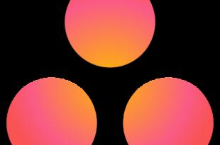 Asana: organize team