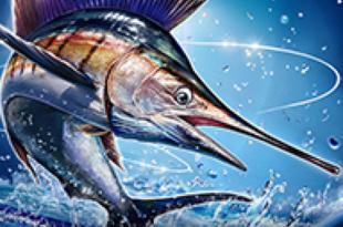 Ace Fishing: Wild